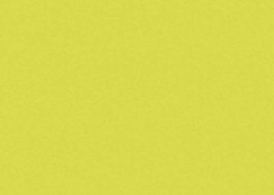 5519 BS зелен лайм
