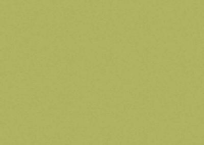 8996 BS зелено океан
